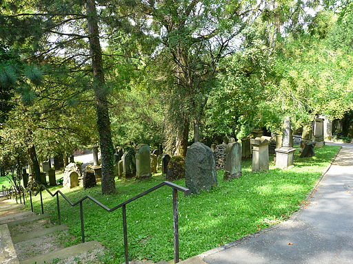 https://upload.wikimedia.org/wikipedia/commons/thumb/b/b7/Bergfriedhof_Heidelberg_Gr%C3%A4berfeld.JPG/512px-Bergfriedhof_Heidelberg_Gr%C3%A4berfeld.JPG