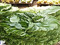 Betel leaves at market in Bangalore.jpg