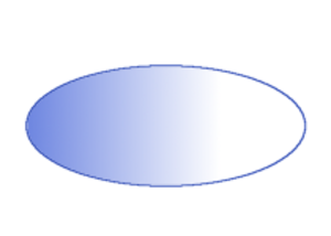 Drosophila embryogenesis - Image: Bicoid gradient