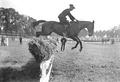 Bild von der Springkonkurrenz der Kavallerie Rekrutenschule Bern - CH-BAR - 3239798.tif
