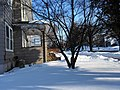 Binghamton, NY, USA - panoramio (59).jpg