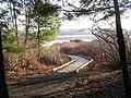 Black Moshannon SP Bog Boardwalk.jpg