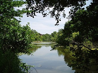 Blackford Pond - View of the pond