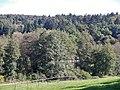 Blick auf eine Mühle im Siebenmühlental - panoramio.jpg