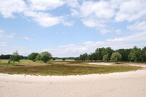 Boberger dune