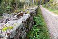 Bogstad Gamleveien ved Strömsbraaten rk 167237 IMG 1876.JPG
