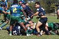 Bond Rugby (13370604804).jpg