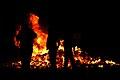 Bonfire (1810230574).jpg