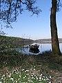 Borre sø forår - panoramio.jpg