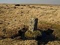 Boundary stone, Holne Moor - geograph.org.uk - 1217486.jpg
