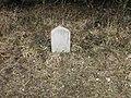Boundary stone east of Gumber Corner - geograph.org.uk - 1759426.jpg