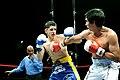 Boxing in Uruguay - Palacio Peñarol 3.jpg