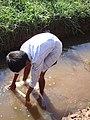Boy in a small muddy stream, catching fish.jpg