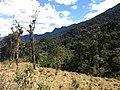Brasil Rural - panoramio (29).jpg