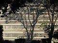 Brasilia-109913.jpg