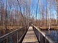 Bridge over Muuramenjoki.jpg