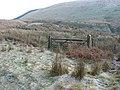 Bridleway across the bog at Waun Llinau - geograph.org.uk - 1095298.jpg