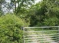 Bridleway junction - geograph.org.uk - 438318.jpg