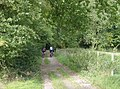Bridleway through woods at Checkendon, Oxfordshire.jpg