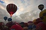 Bristol Balloon Fiesta 2011 (6042232075).jpg