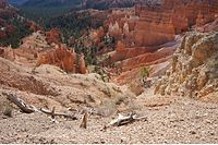 Bryce Canyon Inspiration (20).JPG