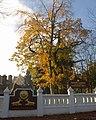 Buddhapadipa Temple, Wimbledon - geograph.org.uk - 2169478.jpg