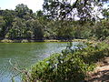 Budj Bim ‐ Mt Eccles National Park, Victoria, Australia 27.jpg