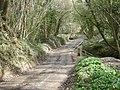 Bullhill Brook ford - geograph.org.uk - 740328.jpg