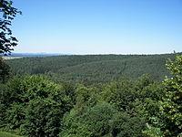 Burgwald 047.jpg