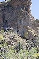 Butcher Jones Trail, Burro Cove and Beyond, Tonto National Park, Arizona - panoramio (45).jpg