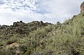 Butcher Jones Trail to Pinter's Point Loop, Tonto National Park, Saguaro Lake, Ft. McDowell, AZ - panoramio (21).jpg