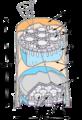 CGRO-COMPTEL-instrument.png