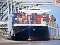 CMA CGM Jules Verne (schip, 2013) Port of Rotterdam pic2.JPG