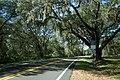 CR325 - Island Grove (29043284883).jpg