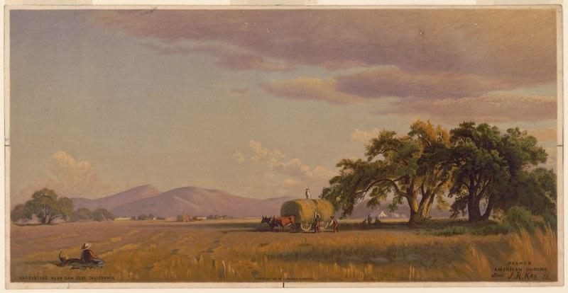 File:California Views. No. 6. harvesting, near San Jose ...