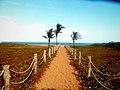 Caminho Na Praia.jpg