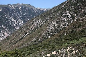 National Recreation Trail - Camp Creek National Recreation Trail, San Bernardino Mountains, California