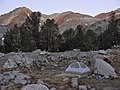 Camp at sunrise near Big McGee Lake (3928400536).jpg