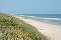 Canaveral National Seashore 2015.JPG