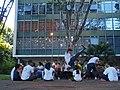 Capoeira (33854576991).jpg
