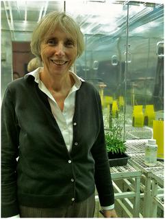 Caroline Dean British botanist