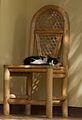Cat (5068186184).jpg