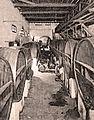 Cave de ND de Staoueli Algérie 1902.jpg