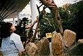 Center Parcs - Bois Francs - 1988-Septembre-P5.jpg