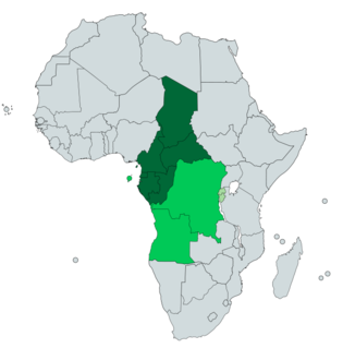Central Africa Core region of the African continent