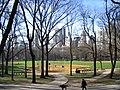 Central park2.JPG