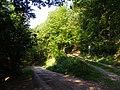 Cesta z Malej Lodiny do Margecian - panoramio.jpg