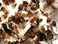 Chalcopyrite-Dolomite-nex2b.jpg