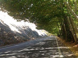 Road 59 (Iran) - Image: Chalus road