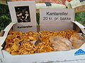 Chanterelles for sale.JPG